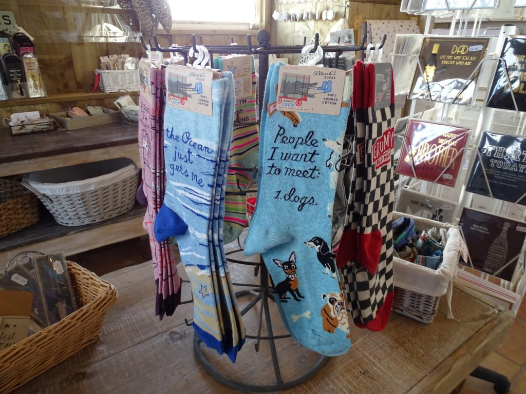 Novelty socks with printed slogans